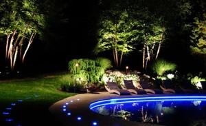Landscape Lights